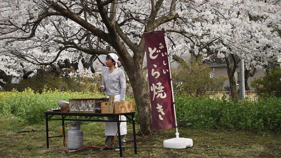 """Recenzja filmu """"Kwiat wiśni i czerwona fasola"""" (2015), reż. Naomi Kawase"""