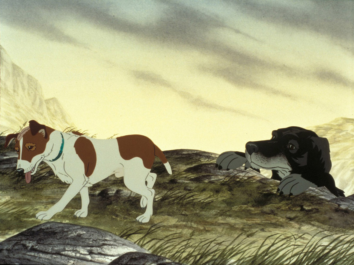 "Recenzja filmu ""The Plague Dogs"" (1982), reż. Martin Rosen"